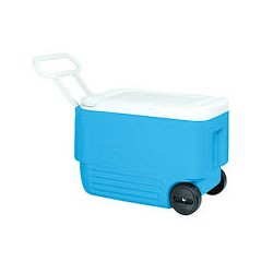 IGLOO WHEELIE COOL 38 ROLLE