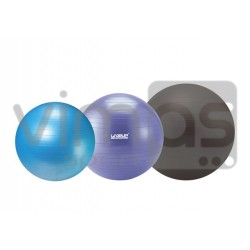 FITBALL 55 cm